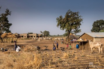 La périphérie de Kandi pullule de petits campements peuls où les familles viennent s'établir plus ou moins anarchiquement. // Kandi - 2016