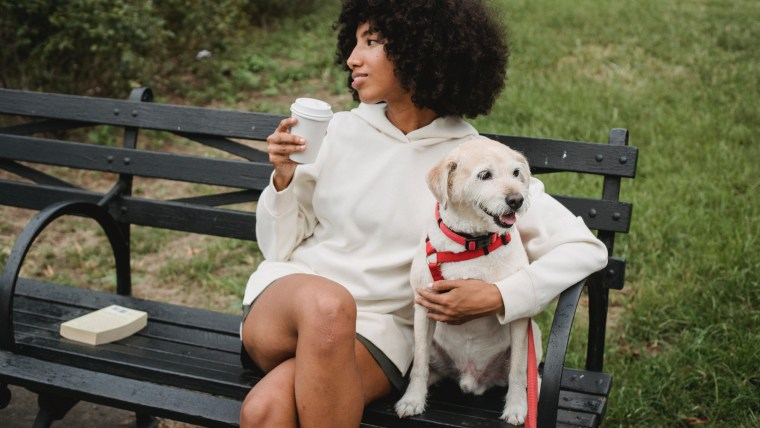 5 Simple Ways to Keep Your Pet Safe