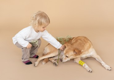 Kids and Pets: 6 Ways to Make Them Get Along