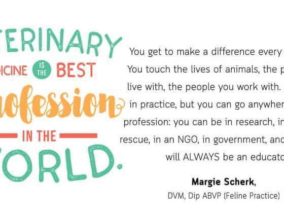 Veterinarian Life Advice - Margie Scherk