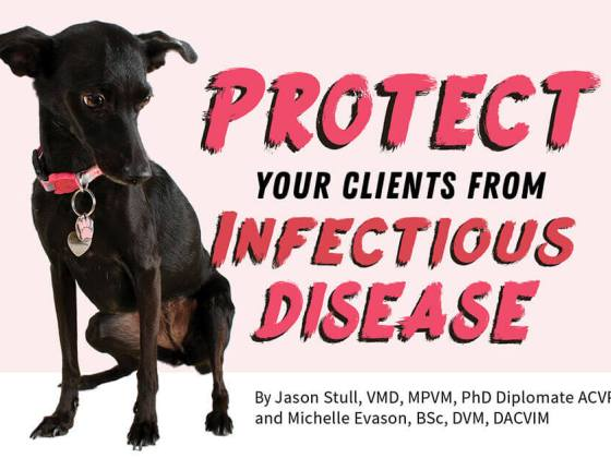 5 Expert Tips to Protect Your Clients from Infectious Disease