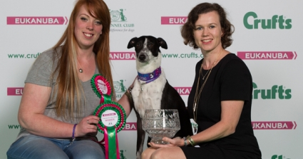 Crufts Announces The Nation's Top Canine Hero, Boo