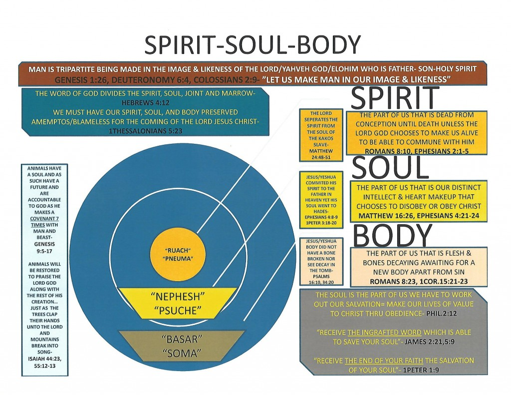 Chart Spirit Soul Amp Body Precious Faith Bible Church