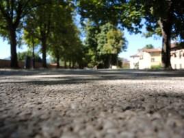 Auf Luccas Mauer