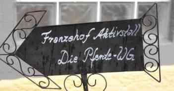 Franzehof-Aktivstall: Die Pferde-WG