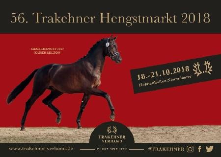 Trakehner Hengstmarkt 2018 geht zu Ende – Siegerhengst Kattenau geht an das Haus Gasser in Österreich