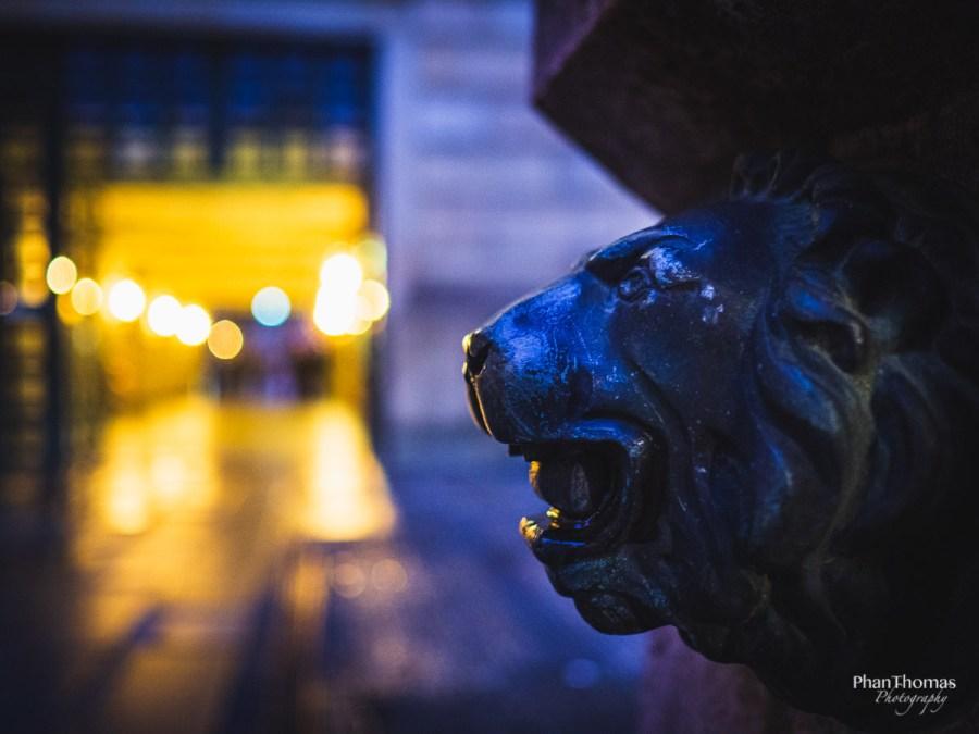Löwenkopf 2