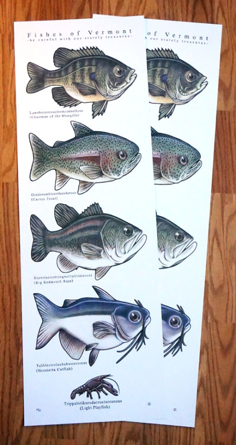 2015_20fishes_20of_20vermont_20pair_original