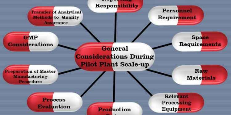 General considerations during pilot plant scale up