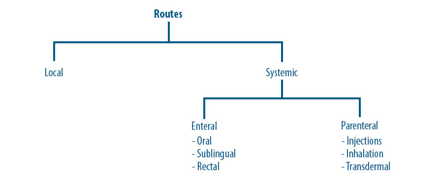 Image showing classification of the various routes of drug administration