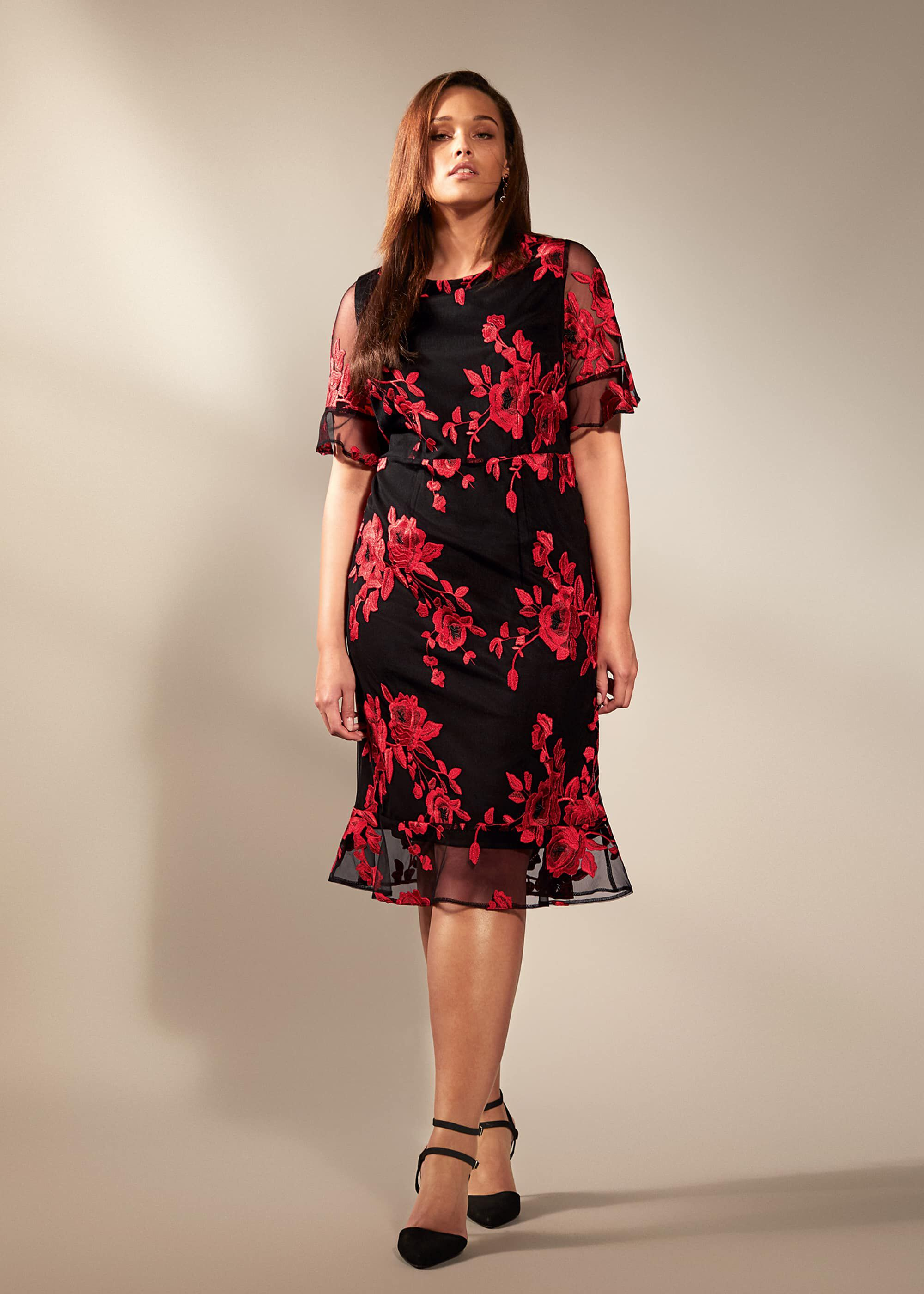 Raven Embroidered Dress 4