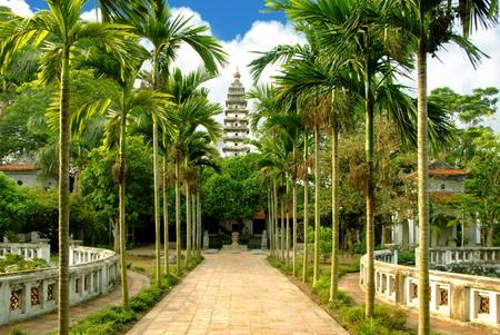 Image result for chu pho minh nam dinh