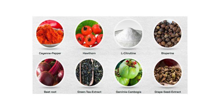 NitriLEAN-Ingredients