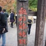 社員旅行、満喫しました☆ 二泊三日の大分&熊本旅行。
