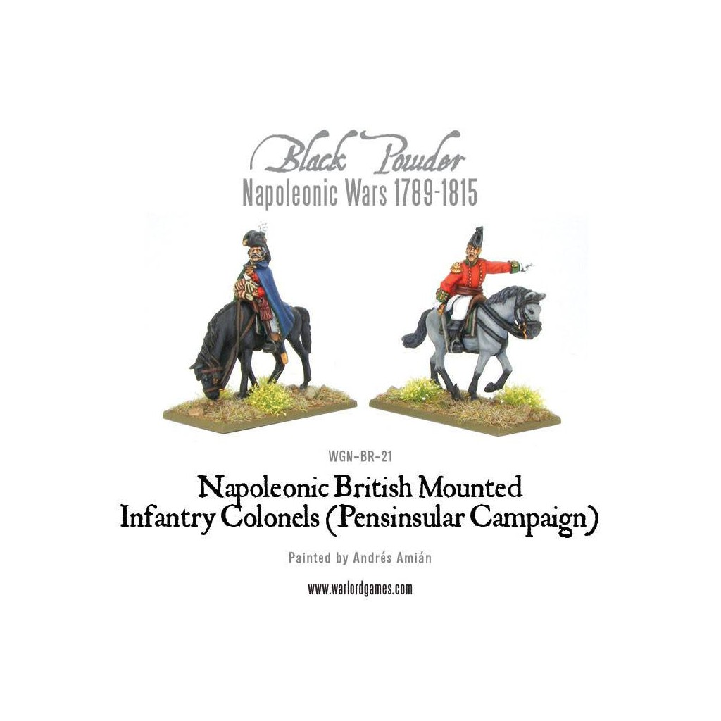 Mounted Napoleonic British Infantry Colonels Peninsular