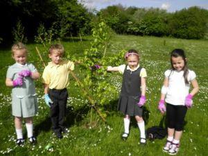 tree planting kids