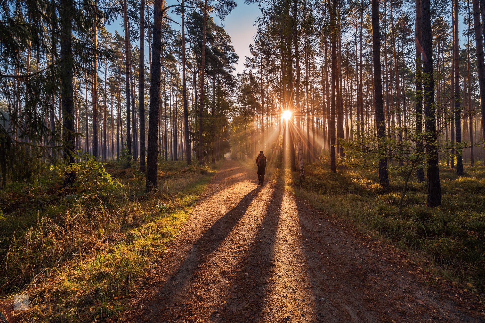 Wandern in Brandenburg – 100km