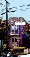 San Jose -- Medium 60x100 259€ // Large 70x130 379€
