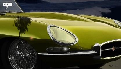Jaguar Easy -- Medium 90x50 219€ // Large140x80 429€