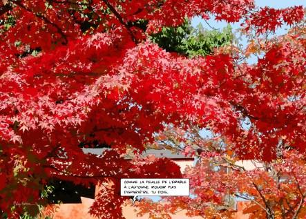 Arbre rouge -- Medium 100x70 259€ // Large 140x100 459€