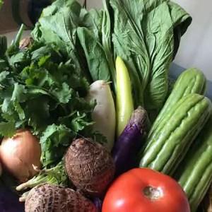 Beautiful tasty vegetables
