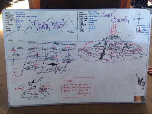 Manta Point / Batu Bolong