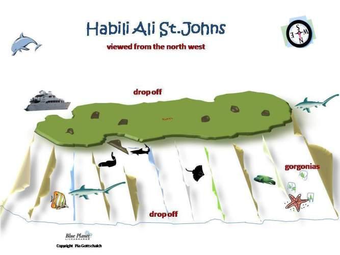 Habili Ali