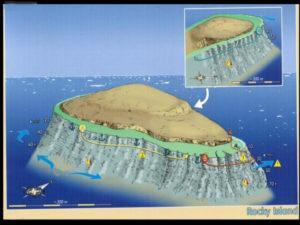 Rocky Island - Plan Général