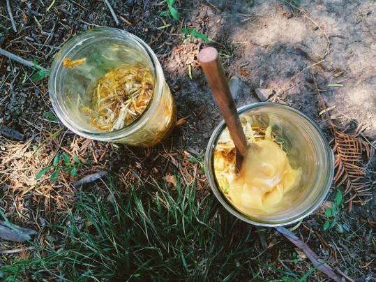 Honeysuckle + Raw Honey Elixir Creation