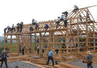 An Amish community building a house together.