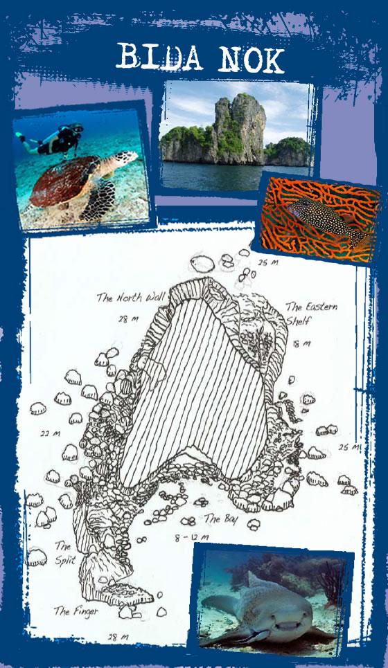 Dive site Bida Nok near Koh Phi Phi Thailand