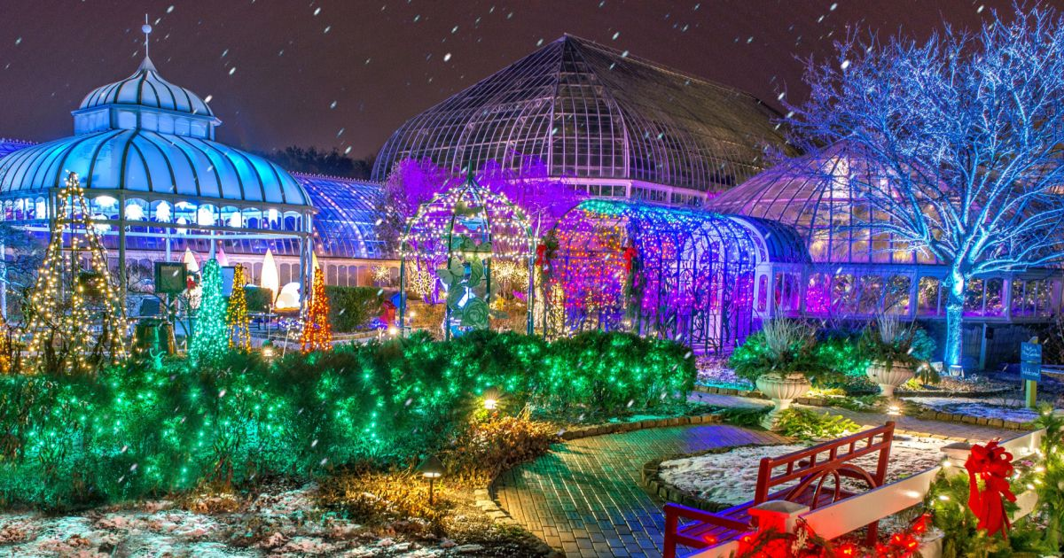 Winter Flower Show And Light Garden Holiday Magic