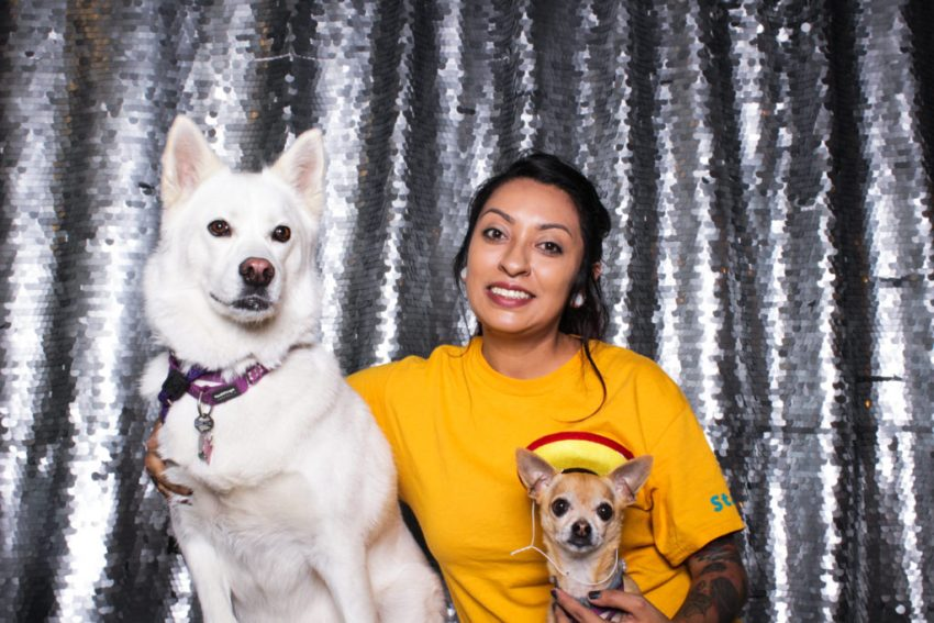 A found animals ambassador and two dogs having fun in the culver city photo booth