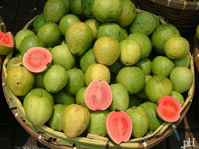 This Summer You Must Eat Guava Without Fail - It Is A Nutrients PowerHouse