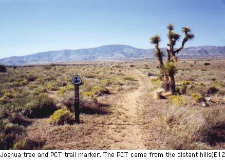 Image result for PCT mojave desert