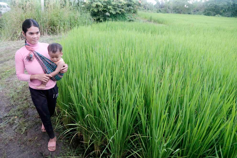 Bank backs eco-friendly farming