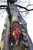 Conceptual – 'female genitalia' in tree bark with bottle caps