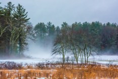 Natural – fog settles on a snow covered field