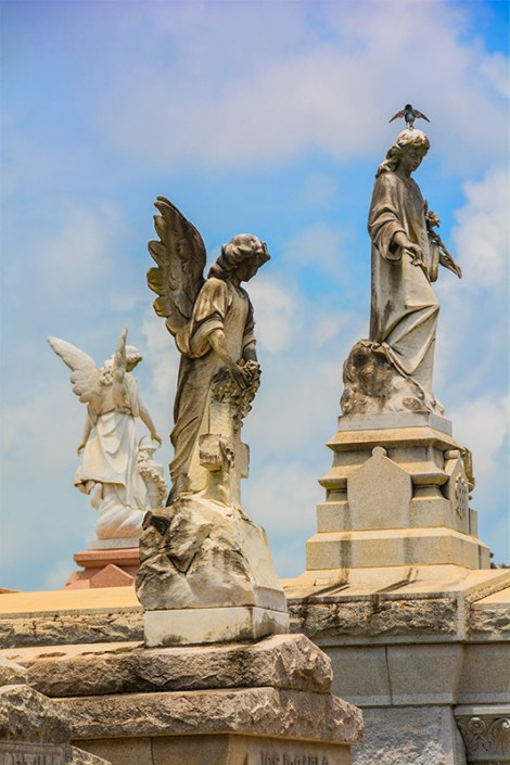 Conceptual – winged angel cemetery statues with bird