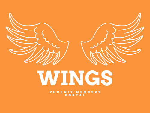 Introducing Wings 🖥