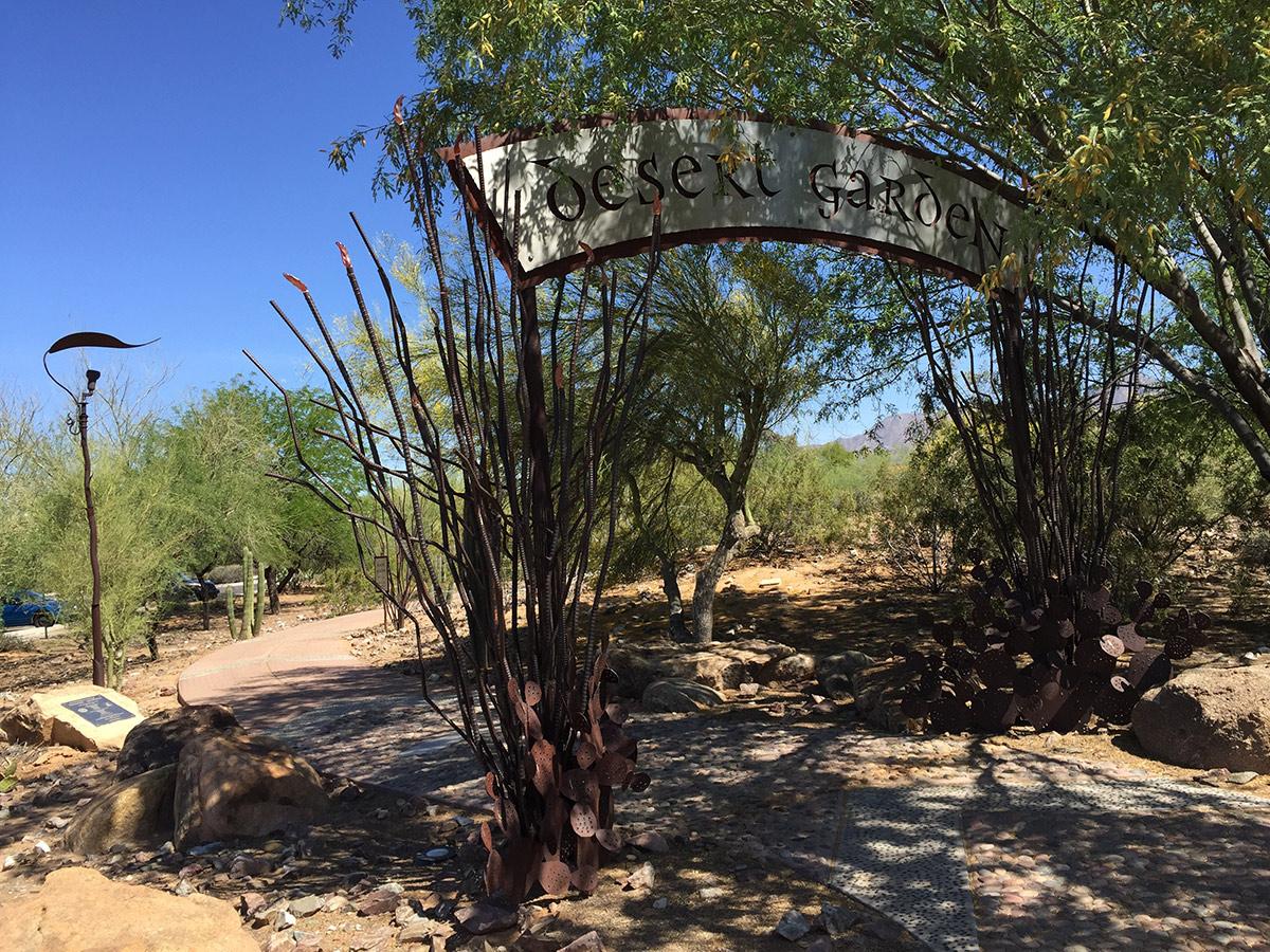 Desert-Garden-at-Scottsdale-Ranch-Park