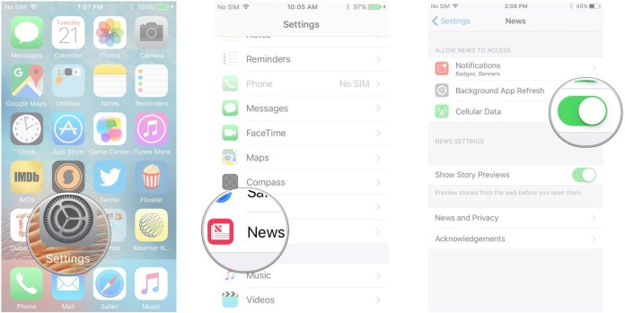 Launch Settings, tap News, tap the switch next to Cellular Data