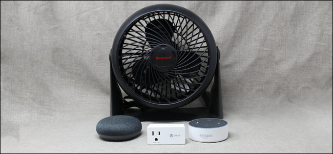 A fan, a smart switch, and Google Home and Amazon Echo devices.