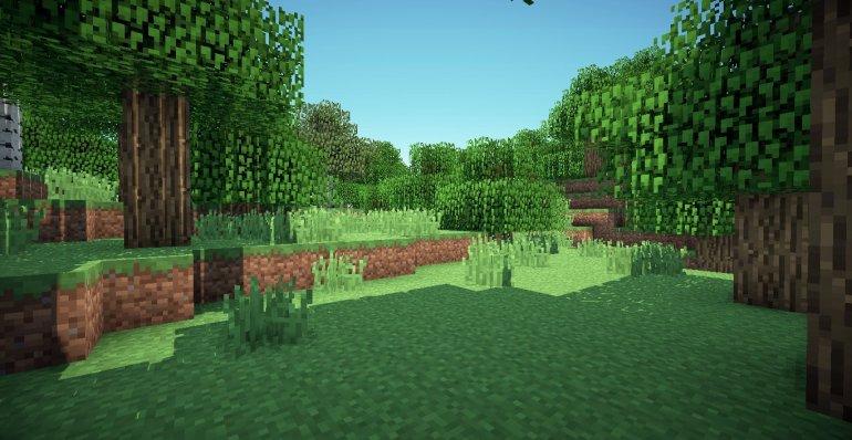 Minecraft Zoom background