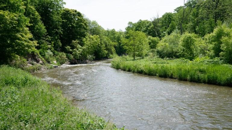 Schitt's Creek Zoom background