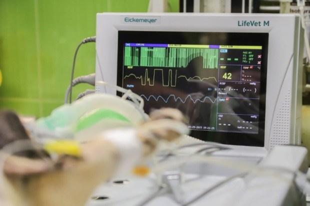 intra-operative ultrasound