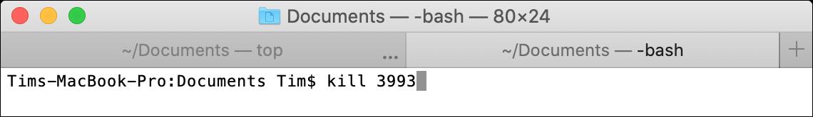 kill macOS Terminal Command
