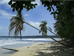 cahuita2.jpg-for-web