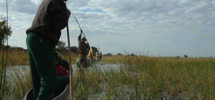 31 juli  2006 Okavango delta
