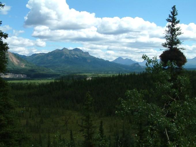 16 juli 2007 Denali NP – Fairbanks
